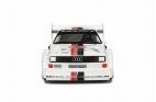 Audi Quattro S1 Pikes Peak