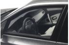 BMW M5 E61